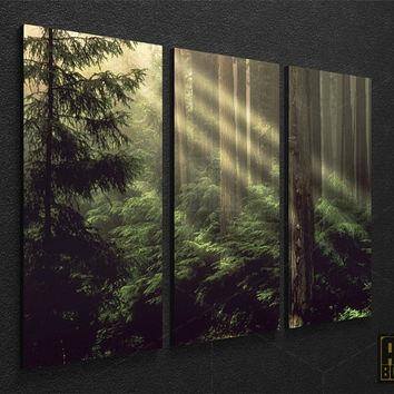 Wall Art Designs: Nature Wall Art Forest Framed Nature Photo Large Regarding Nature Canvas Wall Art (Image 19 of 20)