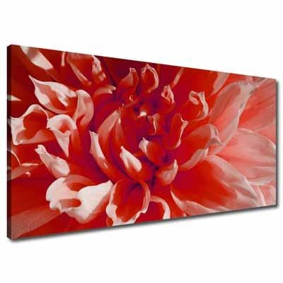 Wall Art: Lastest Ideas Flower Wall Art Canvas Red Flower Canvas Throughout Canvas Wall Art In Red (Image 20 of 20)