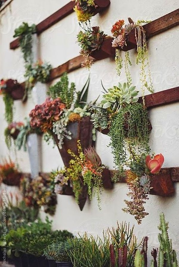 Cool 21 Amazing Succulent Wall Art To Be Hang On The Wall Https Within Succulent Wall Art (Image 2 of 10)
