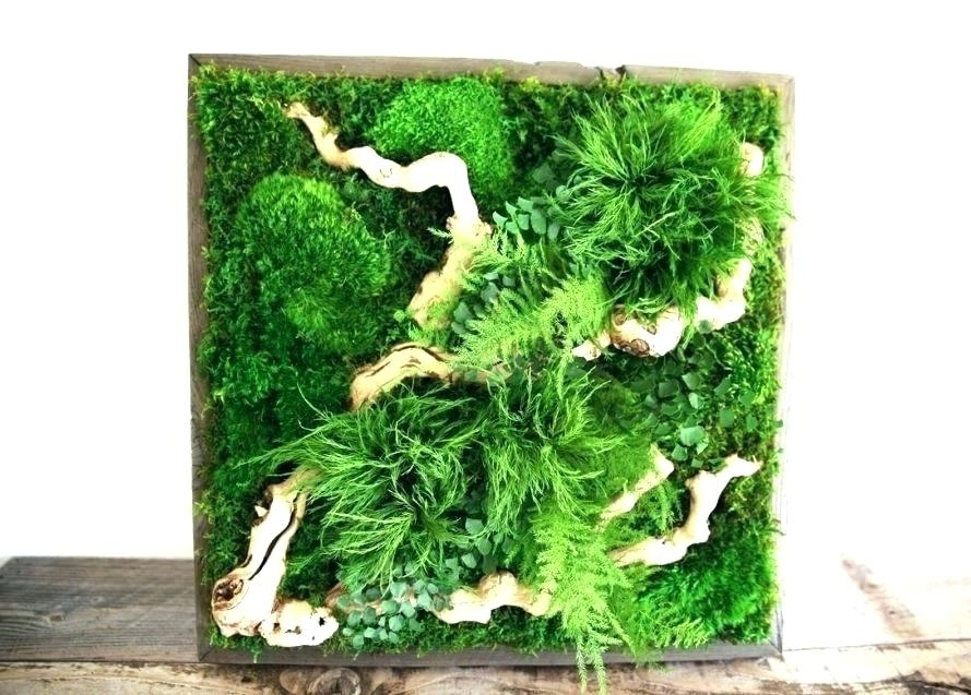Diy Moss Wall Moss Wall Art Spectacular Designs That Outdoor Re Diy Regarding Moss Wall Art (Image 3 of 10)