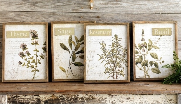 Framed Herb Wall Art, Set Of 4 | Antique Farmhouse With Herb Wall Art (View 7 of 10)