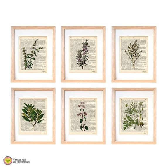 Kitchen Herbs Wall Art Set Of 6 Set Of 6 Herbs Dictionary Prints Inside Herb Wall Art (Image 7 of 10)
