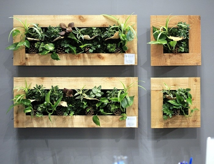Liven Up Your Home With Indoor Vertical Wall Planters – Garden Therapy Throughout Living Wall Art (Photo 9 of 10)