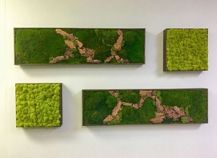 Moss Wall Art 36X18 With Driftwood Wabimoss, Moss Wall Art Pertaining To Moss Wall Art (Image 6 of 10)