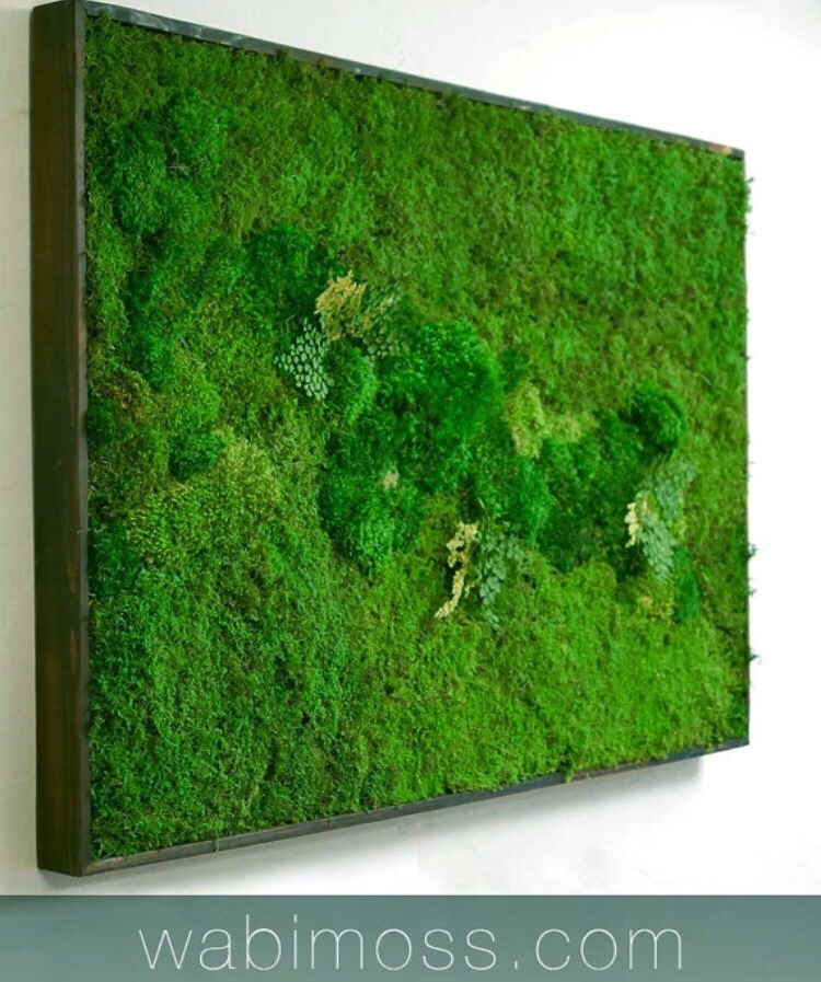 Moss Wall Art 54X36 – Wabimoss With Regard To Moss Wall Art (Image 7 of 10)