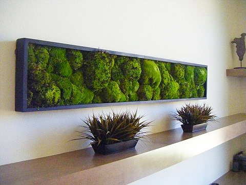 Mosswallart Pieces For Sale Online – Best Living Artwork For Home Within Moss Wall Art (Image 8 of 10)