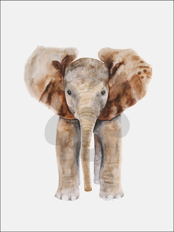 Oopsy Daisy Baby Elephant Canvas Wall Art | Kids N Cribs With Regard To Elephant Canvas Wall Art (Image 7 of 10)