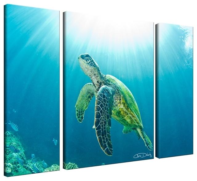 Ready2Hangart Christopher Doherty 'sea Turtle' Canvas Wall Art (3 With Sea Turtle Canvas Wall Art (Image 5 of 10)
