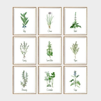Shop Herb Wall Art On Wanelo With Herb Wall Art (Image 9 of 10)