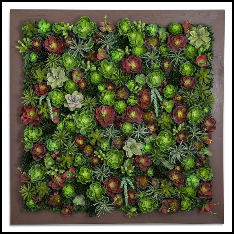 Succulent Living Wall 48Inl X 48Inh Inside Succulent Wall Art (Image 5 of 10)