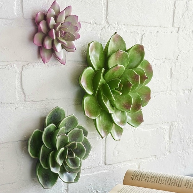 Succulent Wall Art, Set Of 3 | Antique Farmhouse Throughout Succulent Wall Art (Image 8 of 10)