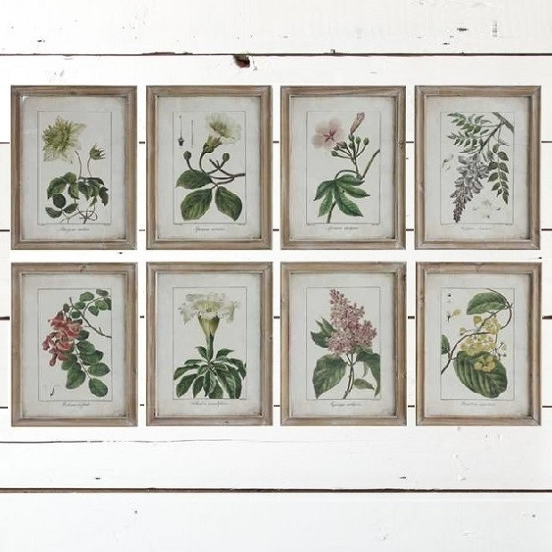 Vintage Style Framed Flower Wall Art, Set Of 8 | Antique Farmhouse Intended For Vintage Wall Art (Image 9 of 10)