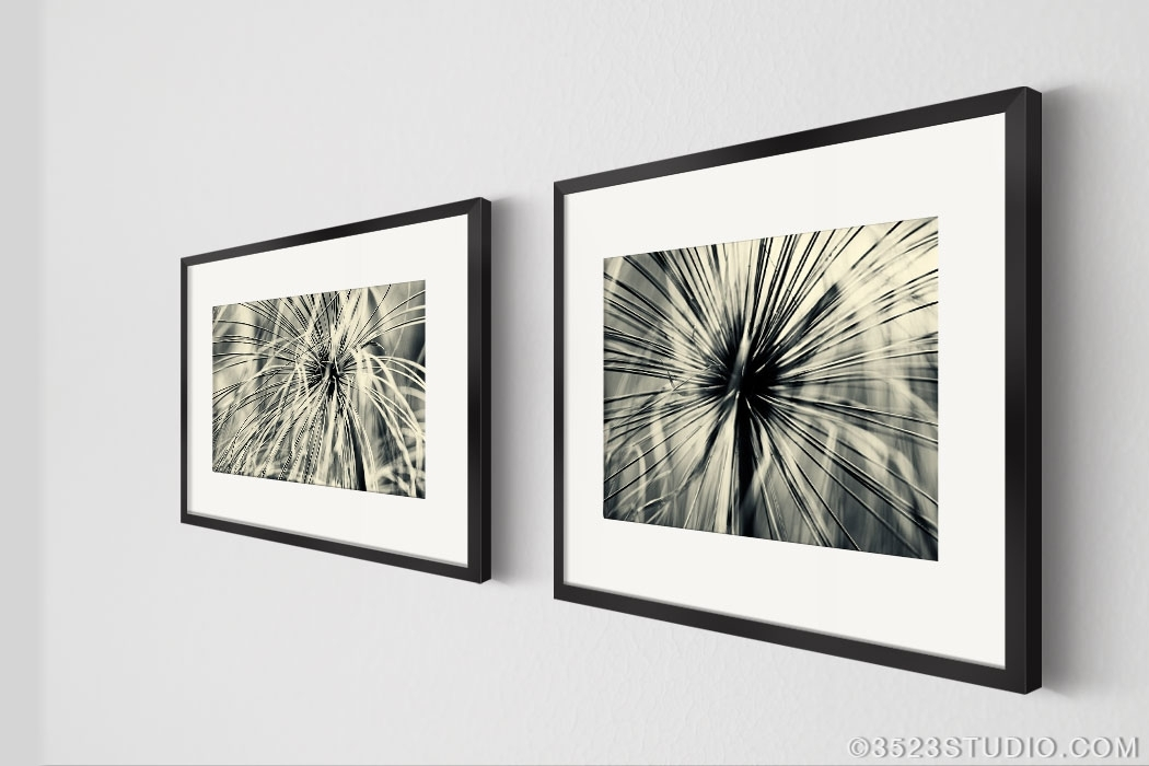 Wall Art Best Ideas Black And White Photography Framed Unusual Regarding Modern Framed Wall Art Canvas (Image 8 of 10)