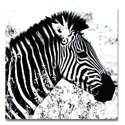 Zebra Wall Art Canvas Zebra Canvas Print Zebra Canvas Prints Canvas Throughout Zebra Canvas Wall Art (View 2 of 10)
