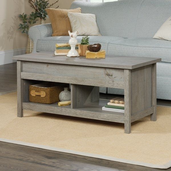 Greyleigh Tilden Lift Top Coffee Table & Reviews | Wayfair In Laurent Lift Top Cocktail Tables (View 5 of 40)