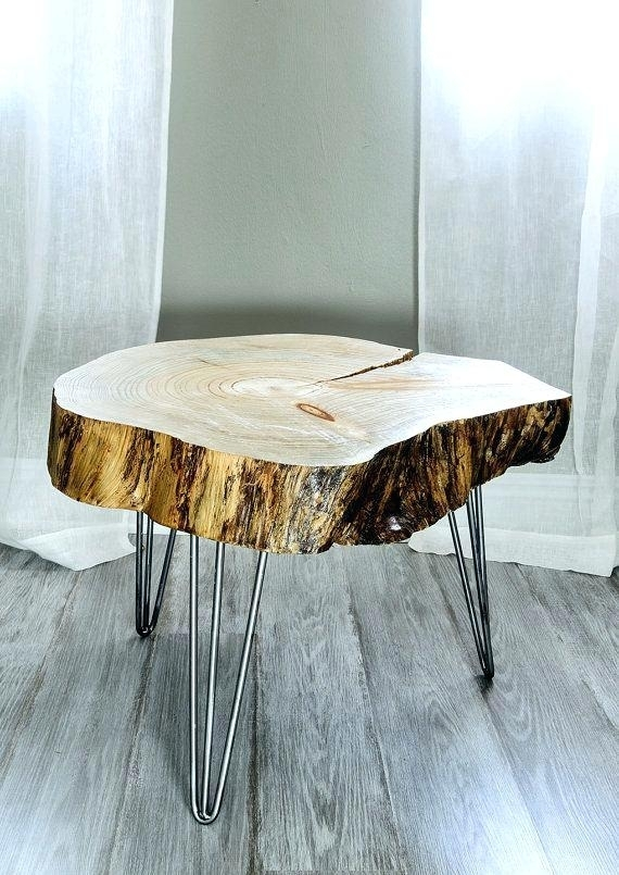 Remarkable Tree Trunk Coffee Table Pertaining To Wood Slice Designs Pertaining To Sliced Trunk Coffee Tables (View 10 of 40)