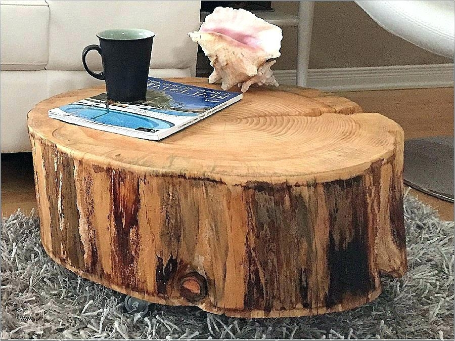 Tree Trunk End Table Wood Slice End Table Sensational Coffee Tree With Sliced Trunk Coffee Tables (View 27 of 40)