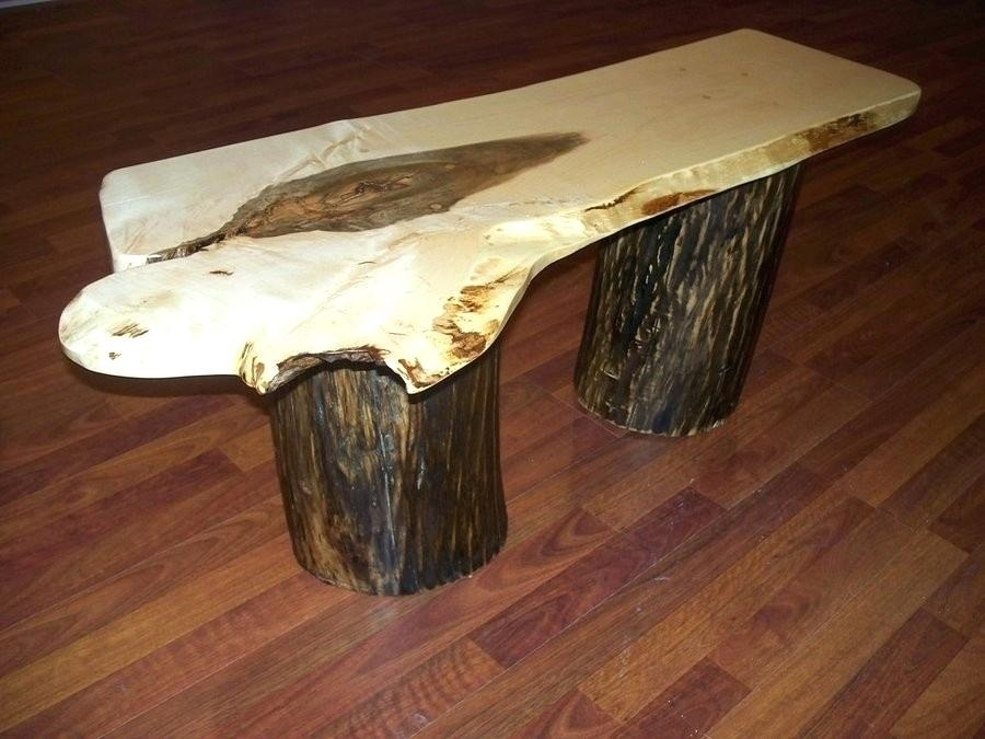 Tree Trunk Slab Coffee Table Lovely Papers Design Slice In Sliced Trunk Coffee Tables (View 20 of 40)