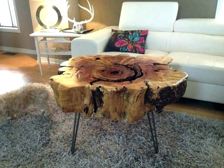 Tree Trunk Table Top Tree Wood Coffee Table Tree Trunk Slices Table In Sliced Trunk Coffee Tables (View 7 of 40)