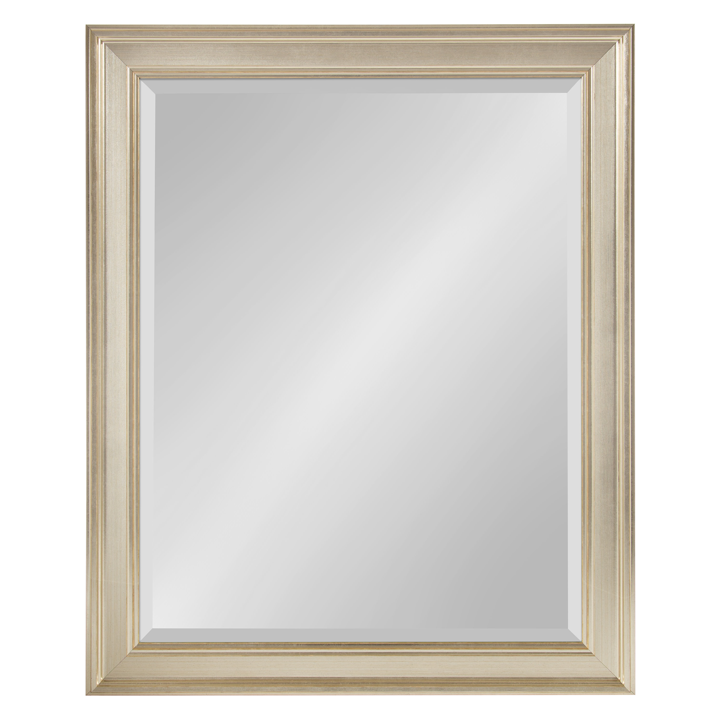 Salter Framed Rectangle Accent Mirror In Dedrick Decorative Framed Modern And Contemporary Wall Mirrors (View 8 of 20)