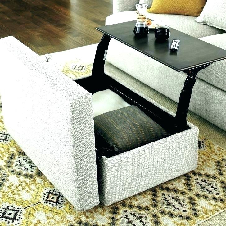 Storage Coffee Table Ottoman – Avelinawhiteford (View 13 of 25)