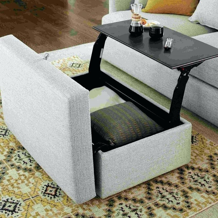 Storage Ottoman Coffee Table – Cleaning Choice (Image 24 of 25)