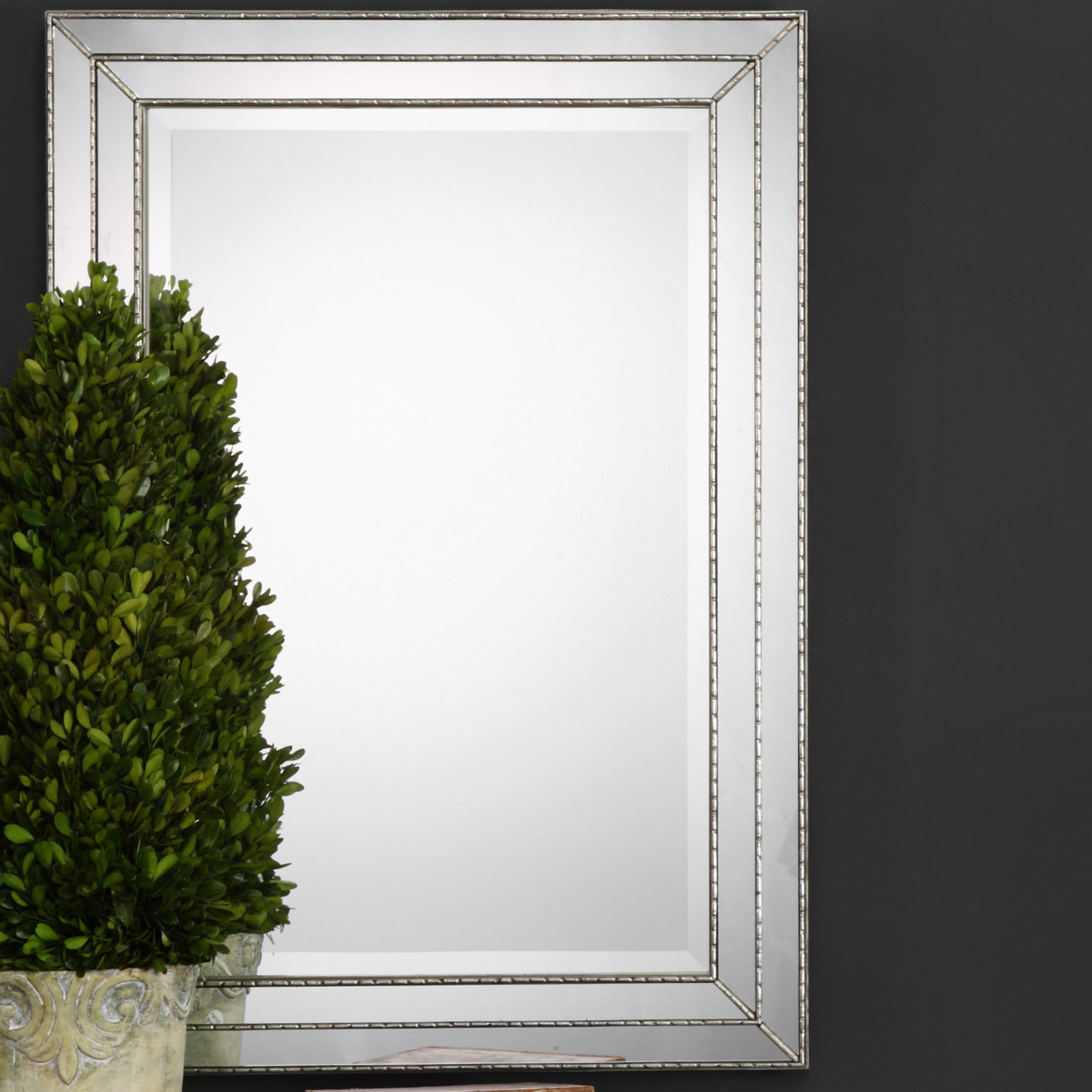 Willacoochee Traditional Beveled Accent Mirror & Reviews Regarding Rectangle Plastic Beveled Wall Mirrors (View 17 of 20)