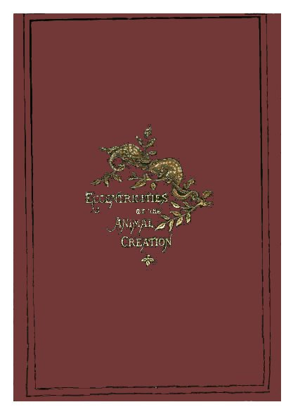 The Project Gutenberg Ebook Of Eccentricities Of The Animal With Regard To Flinders Forge 45 Inch Tier Pairs In Dove Grey (View 6 of 25)