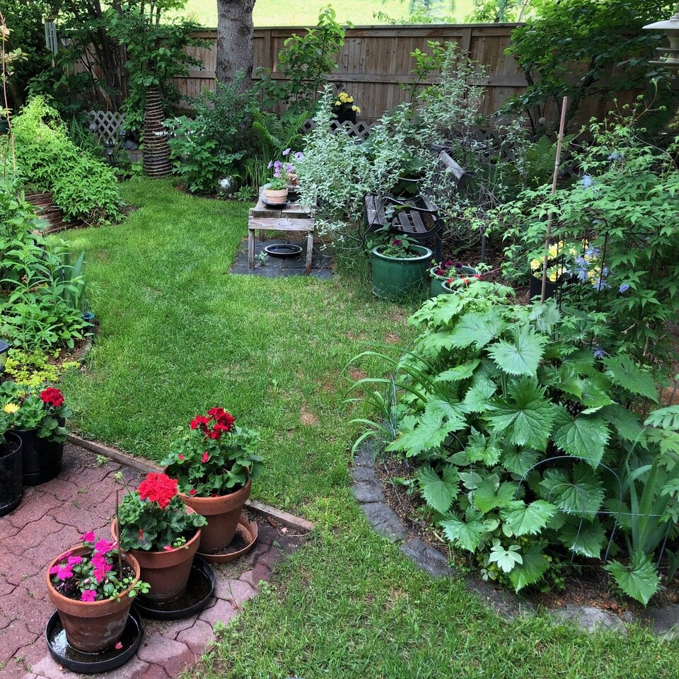 Backyard Ideas: The Rise Of The Backyard Oasis In Calgary Ab Intended For Glendale Heights Birds And Butterflies Garden Stools (View 18 of 25)