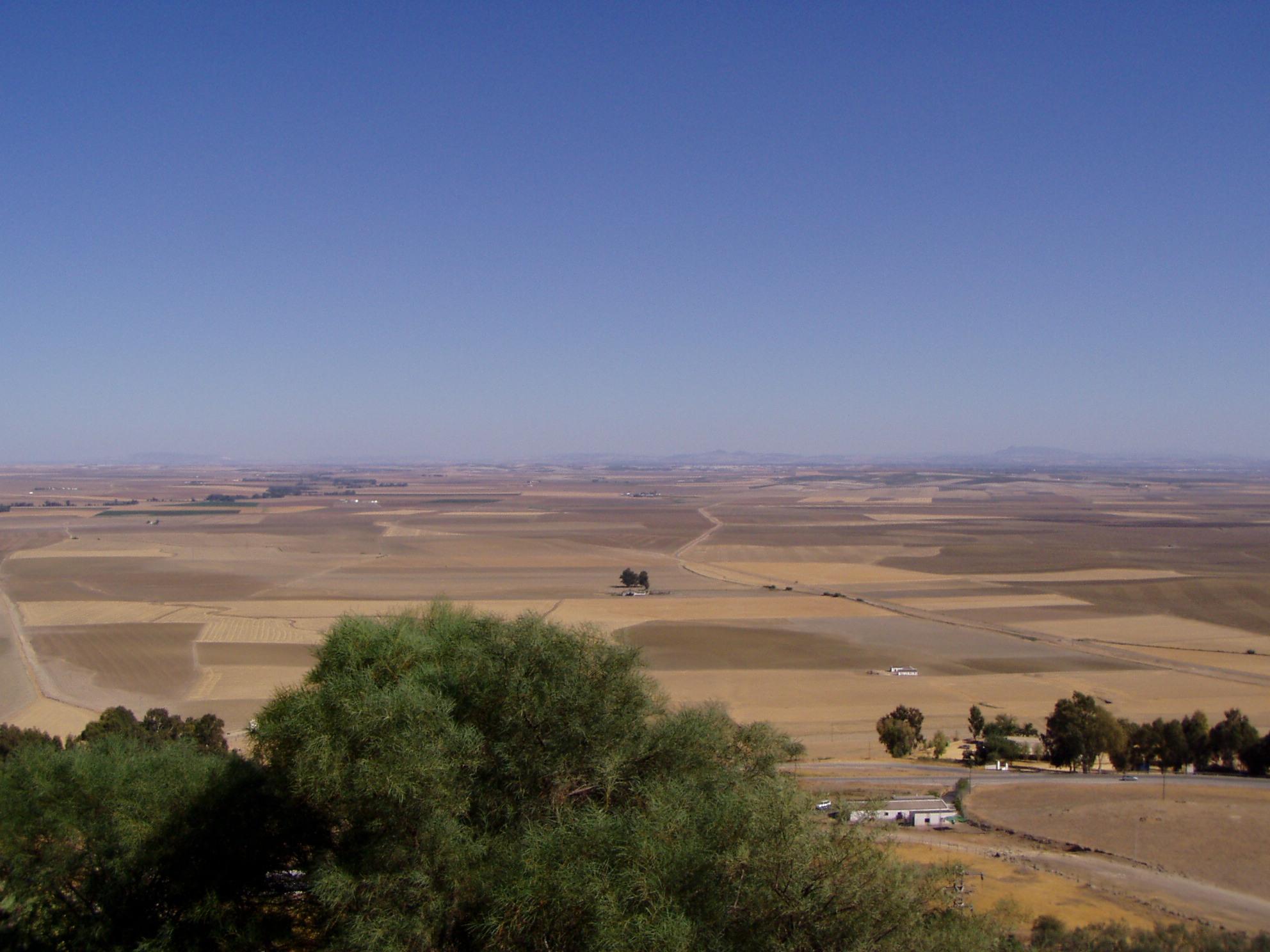 History Of Carmona, Spain – Wikipedia Inside Carmon Ceramic Garden Tool (View 25 of 25)
