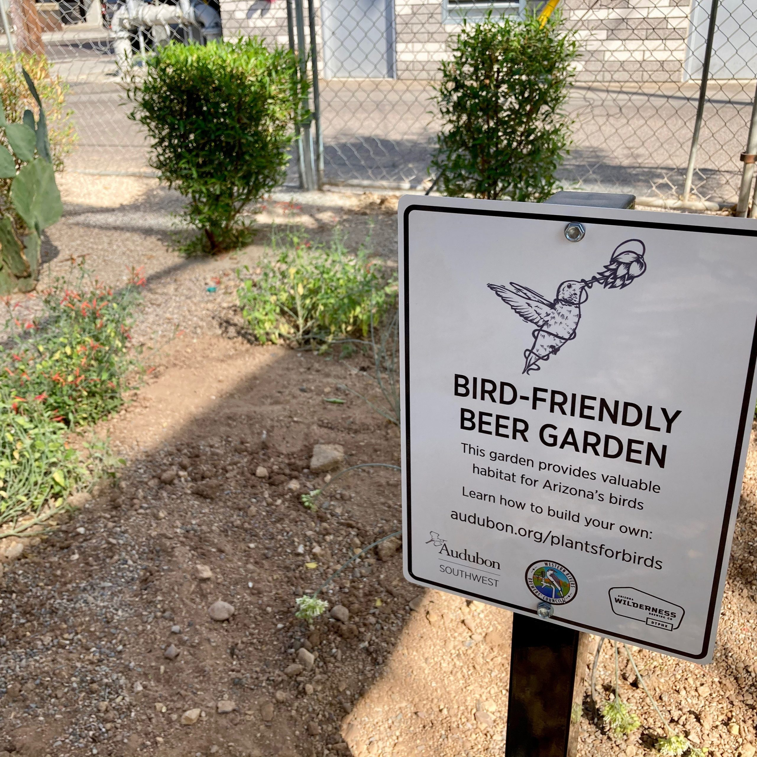 How Arizona Wilderness Dtphx Became Maybe The First Bird With Glendale Heights Birds And Butterflies Garden Stools (View 20 of 25)