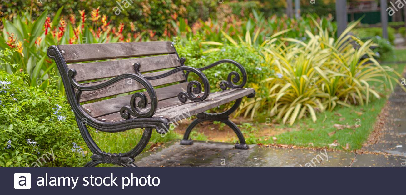 Page 2 – Public Garden Bench High Resolution Stock Throughout Strasburg Blossoming Decorative Iron Garden Benches (View 9 of 25)