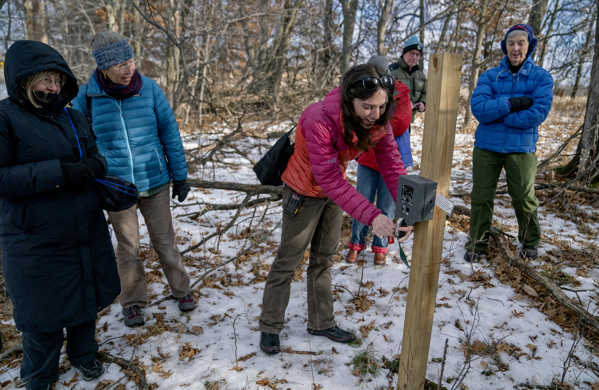Armchair Naturalists Help Minnesota Researchers Classify More Pertaining To Deer Trail Armchairs (View 15 of 15)