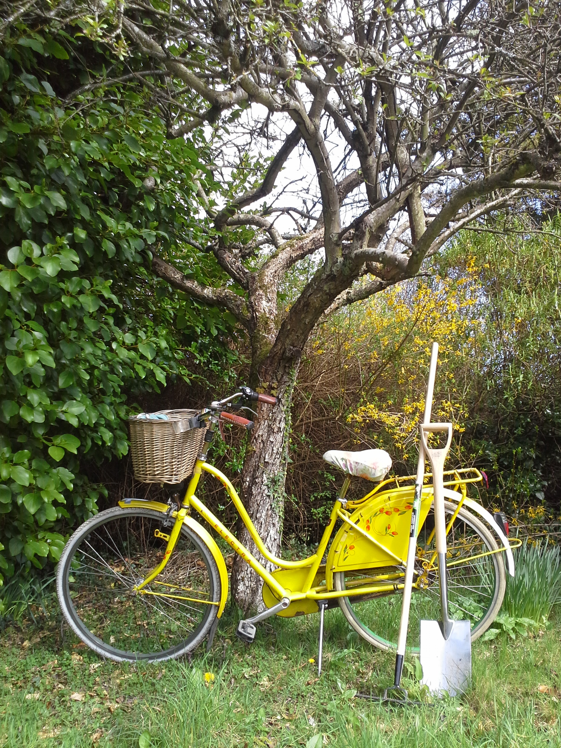 Stephpep56 | The Woman On The Yellow Bicycle | Page 10 For Blaithin Simple Single Barrel Chairs (View 13 of 15)