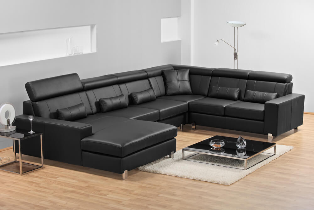 20 Types Of Sofas & Couches Explained (With Pictures) With Felton Modern Style Pullout Sleeper Sofas Black (View 2 of 15)