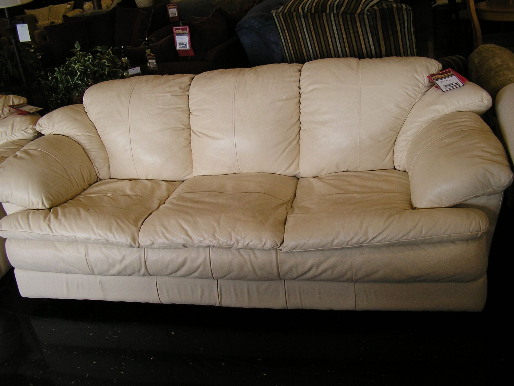 From Ubberhaus, A Cream Colored Leather Sofa For Only $495 Intended For Cream Colored Sofas (View 10 of 15)