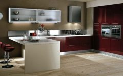 2013 Burgundy Kitchen Design Ideas