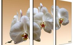 3 Piece Floral Canvas Wall Art