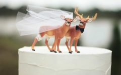 10 Wedding Cake Topper Ideas