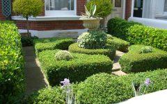 Contemporary Garden Edging