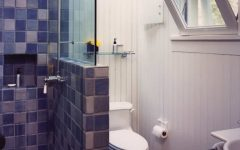 Cottage Bathroom With Hexagonal Floor Tile and Blue Shower