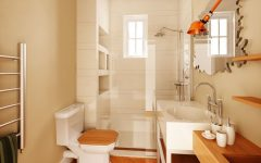 Fancy Contemporary Bathroom Shower and Toilet 2014