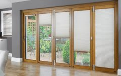French Door with Curtain