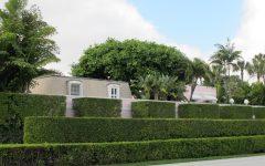 Garden Hedges Design Ideas