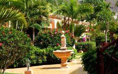 Green Garden Design Ideas