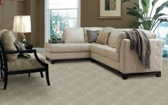 Berber Carpet for Living Room Flooring