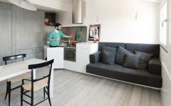 Minimalist Design Attic Living Room and Kitchen Combo