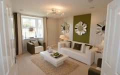 Narrow Living Room Romantic Elegant