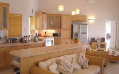 Popular Kitchen Combined With Living Room Decoration