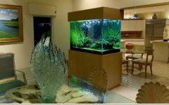 Small Aquarium Design Ideas